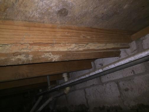Broken Arrow Termite Extermination